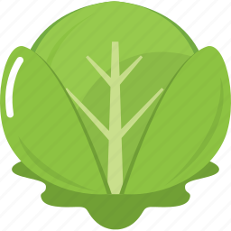 cabbage, cook, cooking, kitchen, restaurant, vegetable, vegetables icon
