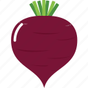 beet, cook, cooking, food, purple, restaurant, vegetable icon