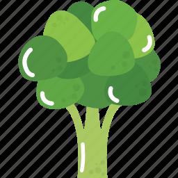 cauliflower, cooking, food, restaurant, vegetable, vegetables icon
