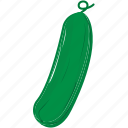 cooking, food, restaurant, vegetable, zucchini icon