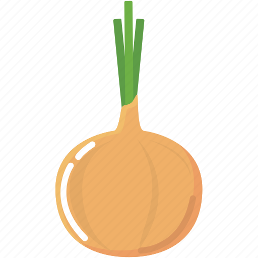 cook, cooking, food, kitchen, onion, vegetable icon