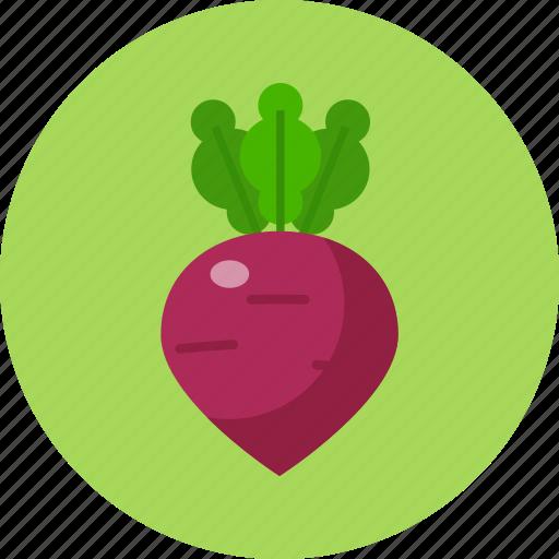 beet, food, food health, green, vegetable icon