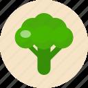 broccoli, food, food health, green, vegetable
