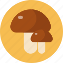 food, food health, mushroom, vegetable icon