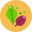 food, food health, salad, vegetable icon