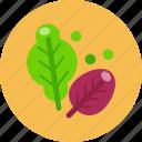 food, food health, salad, vegetable