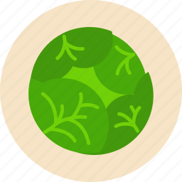 cabbage, food, food health, green, vegetable, white icon