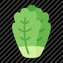 colour, cos, food, gem, lettuce, salad, vegetable icon