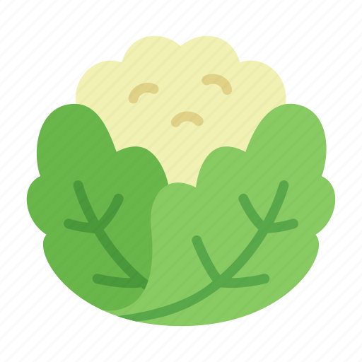 cauliflower, colour, food, green, health, leaf, vegetable icon