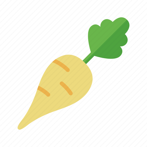 colour, food, garden, green, health, parsnip, vegetable icon