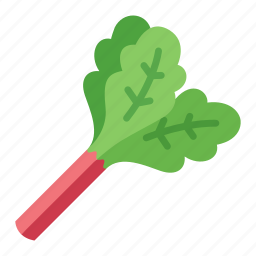 colour, food, green, health, rhubarb, tart, vegetable icon