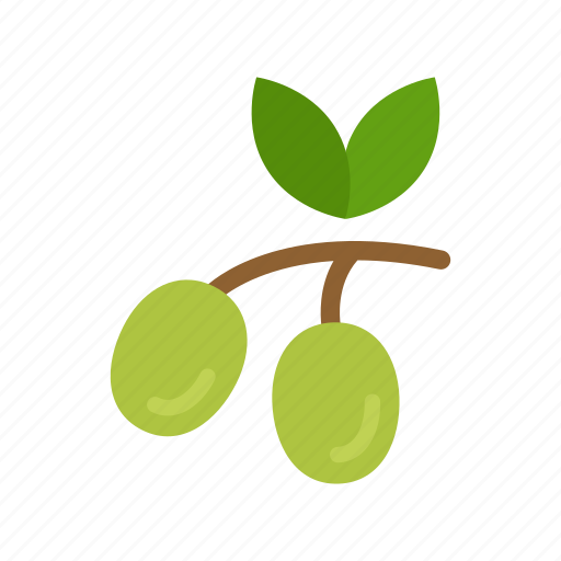 branch, colour, food, green, oil, olive, vegetable icon