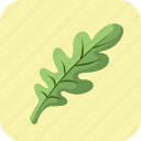 arugula, diet, food, greens, leaf, meal, salad icon