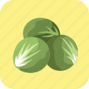 brussels, diet, fresh, meal, nutrition, sprouts, vegetable icon