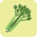 celery, diet, food, fresh, meal, nutrition, vegetable icon