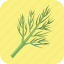 dill, food, greens, healthy, meal, nutrition, vegetable icon