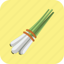 food, lemongrass, meal, salad, spice, tasty, vegetable icon