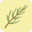 food, meal, nutrition, rosemary, spice, vegetable icon