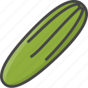 cucumber, filled, food, outline, vegetable, vegetables icon