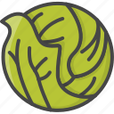 cabbage, filled, food, outline, vegetable, vegetables icon