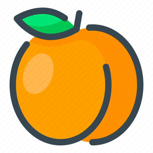 apricot, food, fruits icon