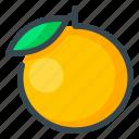 food, fruits, orange
