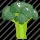broccoli, diet food, healthy food, nutrition, vegetable icon