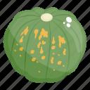 food, healthy food, organic pumpkin, pumpkin, vegetable