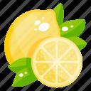 citrus, diet, food, fruit, lemon, lemon slice icon