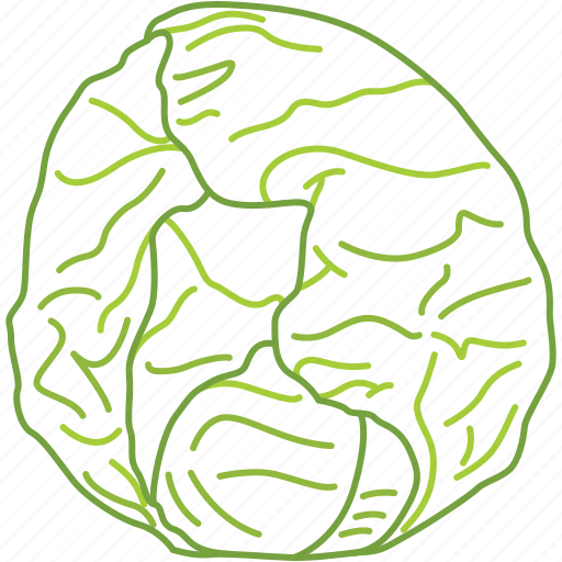 cabbage, eating, kitchen, lunch, vegetables, vitamin c icon