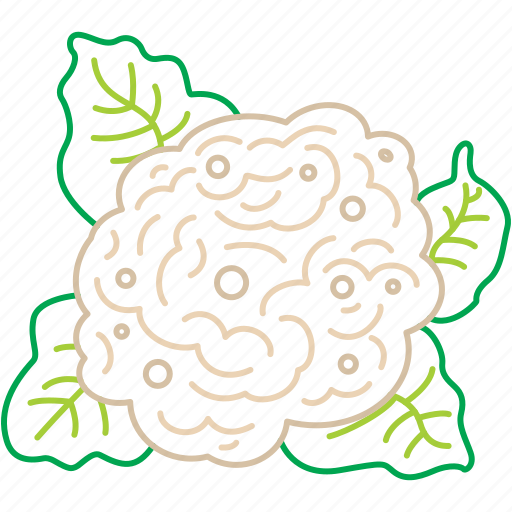 cauliflower, eco, food, nature, vegetable icon