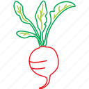 food, organic, radish, red vegetable, salat, vegetables icon
