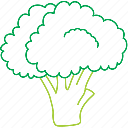 broccoli, food, green flower, nature, organic, vegetables icon