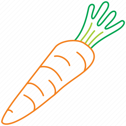 carrot, carrots, food, kitchen, organic, vegetable icon