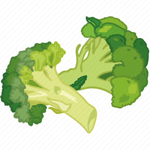 broccoli, cooking, greens, vegetable, veggie icon