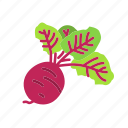beet, farm, food, organic, vegetable, vegetarian icon