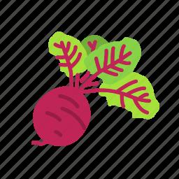beet, farm, food, organic, vegetable, vegetarian icon