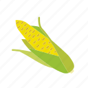 corn, farm, maize, organic, vegetable, vegetarian icon