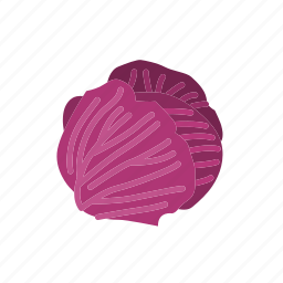 cabbage, food, organic, purple cabbage, vegetable, vegetarian icon