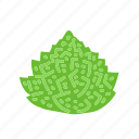 cauliflower, farm, food, organic, vegetable, vegetarian icon