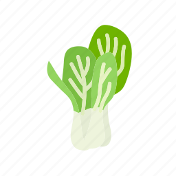 bok choy, chinese cabbage, farm, food, vegetable, vegetarian icon