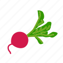 farm, food, organic, red radish, vegetable, vegetarian icon