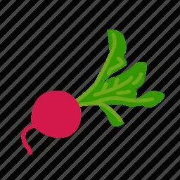 farm, food, organic, red radish, vegetable, vegetarian icon