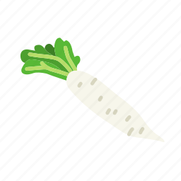 farm, food, organic, vegetable, vegetarian, white radish icon