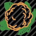 cauliflower, cauliflower leaf, vegetables icon icon