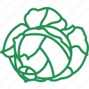 cabbage, cabbage ball, cabbage leaf, cabbage salad, vegetables icon icon