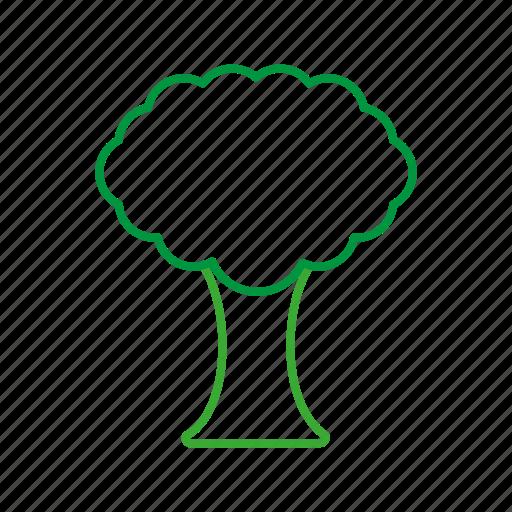 brocolli, coloredbeans, cook, food, green, kitchen, vegetable, veggies icon