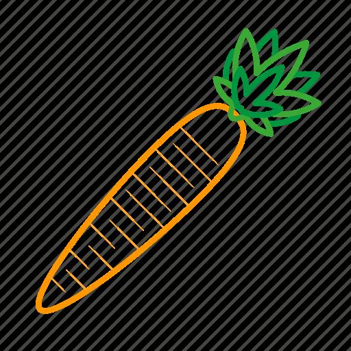 carrot, coloredbeans, cook, food, kitchen, orange, vegetable, veggies icon