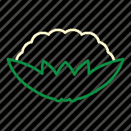 cauliflower, coloredbeans, cook, food, kitchen, vegetable, veggies, white icon