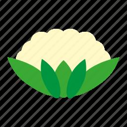 cauliflower, coloredbeans icon